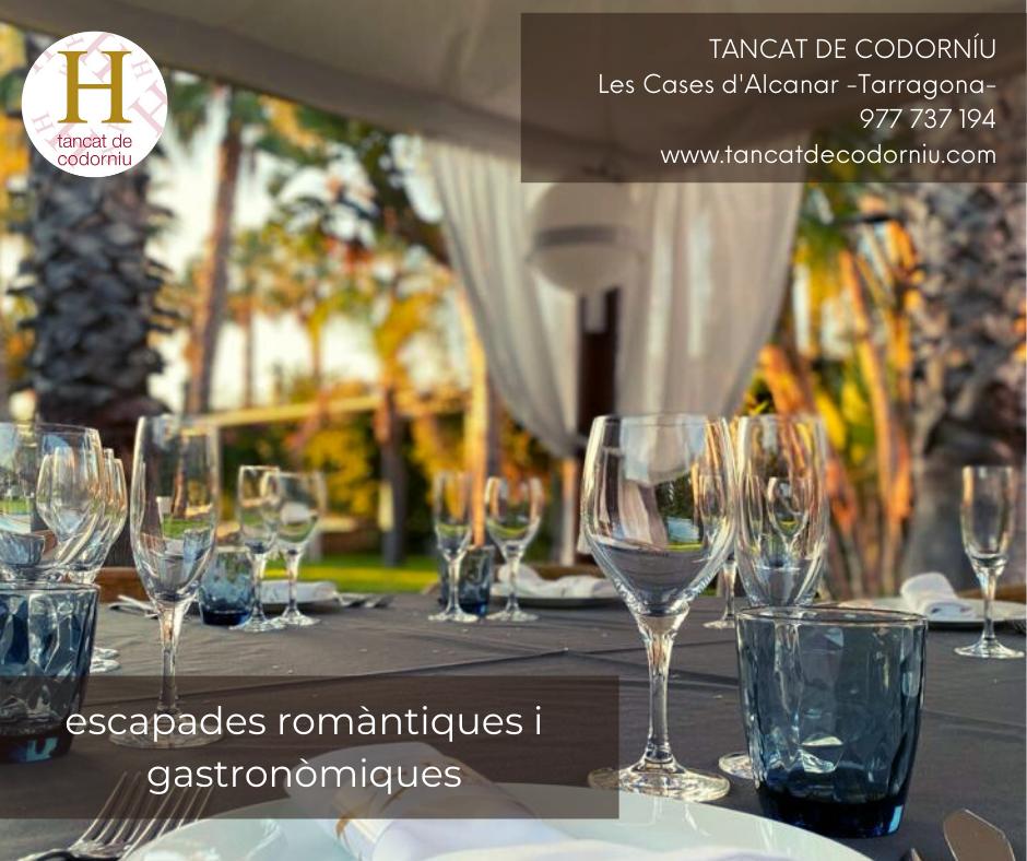 Copia_de_Copia_de_Copia_de_Copia_de_tancat_de_codorniu_soleil